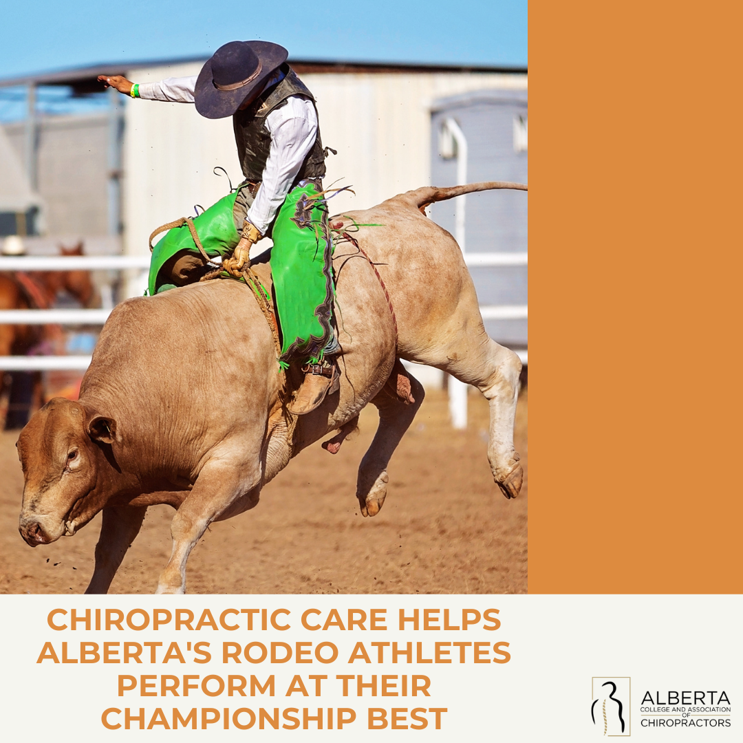 Chiropractic care helps Alberta's rodeo athletes preform at their championship best